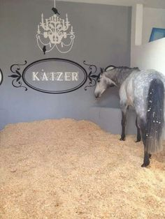 Very cute idea for each horse and their stall
