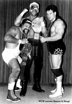 Sting the WCW Heavyweight Champion and the Steiners the WCW United States Tag Team Champions