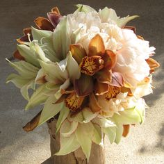 hand-tied bouquet with pale green amaryllis, La Vie Carina cymbidiums and Coral Charm peonies