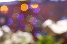 New free stock photo of art lights blur - Stock Photo
