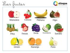 Fruits and vegetables (I), for those Spanish students who spend time at the market and supermarket. Check our more Spanish vocabulary and excercices on our blog.