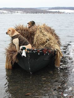 Love the duck hunter in his jacket!!