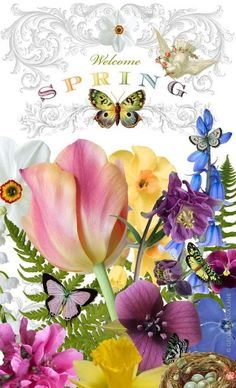 The wonders of Spring ~ everything is so fresh and beautiful Welcome Spring, Spring Sign, Happy Spring, Hello Spring, Vernal Equinox, Spring Fever, Spring Is Here, Spring Ahead, Spring Has Sprung