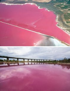 Salina de Torrevieja, Spain -- one of the amazing pink lakes of the world. How to travel to the best of them:  http://travel.spotcoolstuff.com/natural-wonders/pink-lakes