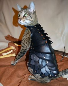 Etsy artist schnabuble, ordinarily in the business of creating fantasy costumes and accessories for adults, created the fearsome suit of armor.
