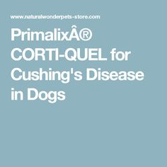 Primalix® CORTI-QUEL for Cushing's Disease in Dogs