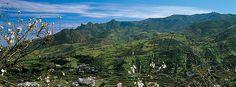 اماكن سياحة عالمية  : جزر الكناري الحمم البركانية وكروم العنب