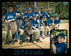 2014 Cubs, baseball team pics, baseball photos, team pictures, sports team.