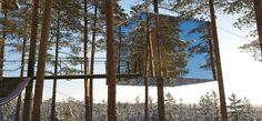 The Tree Hotel, luxury cabins in the trees in Lapland, Sweden Patagonia Hotel, Adventure Hotel, Treehouse Hotel, Unusual Hotels, Le Cap, Lappland, Luxury Cabin, In The Tree, 10 Tree