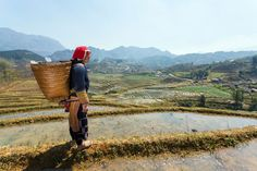 Here at Rough Guides we've always known that Vietnam is magical. The gleaming skyscrapers of the country's booming cities have a singular kind of beauty that Lao Cai, Beautiful Places, Most Beautiful, Sa Pa, Tour Operator, Vietnam Travel, Trekking, Places To Go, Tourism