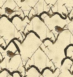 NATURE OF JAIL BIRD