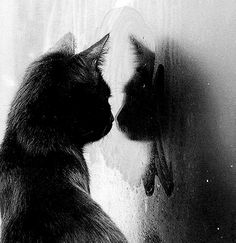 """When will my reflection show who I am inside?"""