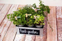 eighteen25: DIY Herb Garden & Plant Markers