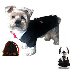Alfie Pet by Petoga Couture - Oscar Formal Tuxedo with Bl... http://www.amazon.com/dp/B00ODVRUTG/ref=cm_sw_r_pi_dp_y2vixb0NP7HWD  500 each