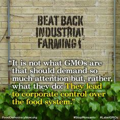 GMOs for Profit: The Missing Context Of Industrial Agriculture. Read More Here:  http://truth-out.org/opinion/item/19997-gmos