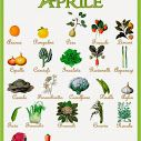 Aprile... il calendario della natura