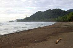 dominicalito attraction stick   - Costa Rica