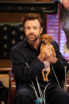 Jason Sudeikis holding puppies. I repeat, Jason Sudeikis holding puppies.