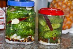 Homemade Kosher Pickles