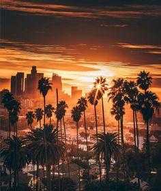 Downtown LA by Scott Lipps