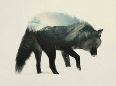 Double exposure photography art shows the animal and its enviornment