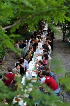 dining at one long table--more social than many smaller ones