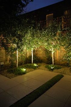 Add the finishing touch to your exterior spaces with well-planned outdoor landscape lighting. Add the finishing touch to your exterior spaces with well-planned outdoor landscape lighting. Modern Landscaping, Outdoor Landscaping, Landscaping With Trees, Backyard Trees, Backyard Privacy, Modern Backyard, Landscape Architecture, Landscape Design, Modern Landscape Lighting