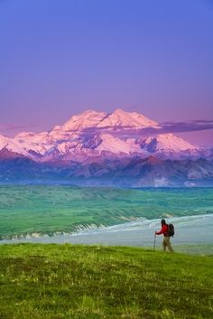 of Mt McKinley in background Denali National Park Interior Alaska summer See Alaska USA - We cover the world over 220 countries, 26 languages and 120 currencies Hotel and Flight deals.guarantee the best price Places To Travel, Places To See, Travel Destinations, North To Alaska, Alaska Usa, Alaska Summer, Alaska Travel, Back To Nature, Places Around The World