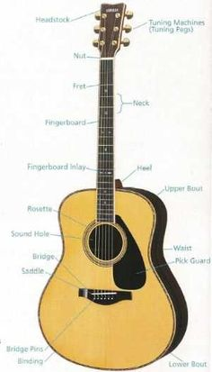 Yamaha Guitars - Laballed Yamaha guitar showing the different parts. An article about the Yamaha Guitar factory and making the guitars. #YamahaGuitars