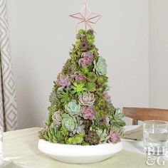 This gorgeous DIY project is fresh and fun for Christmas! Spruces and firs aren't the only Christmas trees this year. We're using succulents to showcase this season's spirit. This DIY tabletop tree makes the perfect holiday centerpiece. Miniature Christmas Trees, Colorful Christmas Tree, Mini Christmas Tree, Christmas Crafts, Christmas Ideas, Christmas Goodies, Holiday Ideas, Xmas, Christmas Tree Colour Scheme