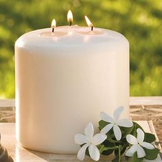 Three-wick Conceal Mosquito-repellant Candle....Candles are good for evening parties and these work for pest control  #backyard and #summer