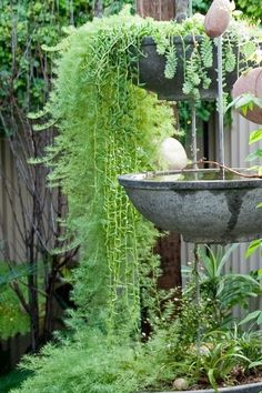 Inventive hanging planters transform a rough backyard into a living sanctuary