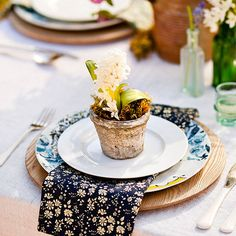 Potted plant as gift at each place setting; coordinating chargers with vintage china