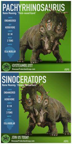 what could have been vs what was (Jurassic World Fallen Kingdom Sinoceratops vs Pachyrhinosaurus) Prehistoric Wildlife, Prehistoric Dinosaurs, Prehistoric Creatures, Dinosaur Drawing, Dinosaur Art, Dinosaur Birthday, Jurassic Park Series, Jurassic Park World, Dinosaur Illustration