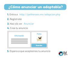 Anunciar un adoptable directamente aca: https://petheroes.mx/anunciar.php