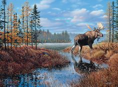 The Prize - moose painting by Jim Kasper Wildlife Paintings, Wildlife Art, Bull Moose, Moose Art, Moose Decor, Moose Antlers, Moose Pictures, Moose Pics, Deer Pics