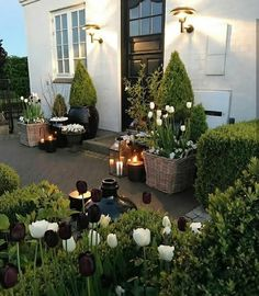 Best And Wonderful and Small Front Yard Landscaping Ideas Front Garden Landscape, Small Front Yard Landscaping, Landscape Plans, Backyard Landscaping, Landscape Design, Landscaping Ideas, House Landscape, Garden Cottage, Home And Garden