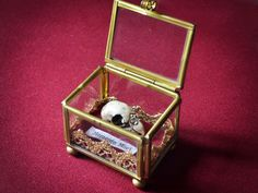 RELIQUARY MEMENTO MORI  vintage glass box by GothChicAccessories, $53.00
