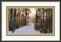 Welcome Home Framed Print By Stephanie Forrer-Harbridge