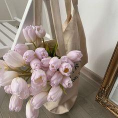 No Rain No Flowers, My Flower, Beautiful Flowers, Cactus Plante, Feeds Instagram, Deco Floral, Flower Aesthetic, Beige Aesthetic, Lilac