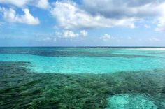 13 Best Snorkeling in the World - Laughing Bird Caye Belize