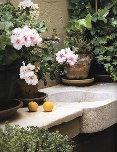 Outdoor Garden Sink *** Read more info by clicking the link on the image. Outdoor Garden Sink, Outdoor Sinks, Outdoor Gardens, Beautiful Gardens, Beautiful Flowers, Beautiful Things, Flower Room, Garden Structures, Garden Spaces