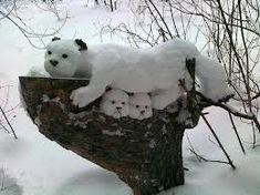Snow Sculptures - You Arts - Quora I Love Winter, Winter Is Here, Abstract Sculpture, Sculpture Art, Bronze Sculpture, Winter Schnee, Snow Sculptures, Metal Sculptures, Snow Art