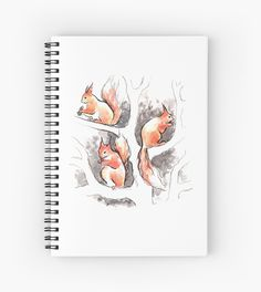 Cute little orange squirrels on tree branches. Graphic art, ink pen and watercolor, 2016. / © Ptitsa-tsatsa / Anastasia Khoroshikh • Also buy this artwork on stationery, apparel, stickers, and more.