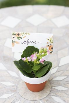 Potted Plant Place Cards DIY