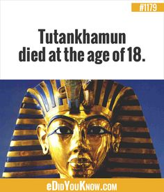 eDidYouKnow.com ►  Tutankhamun died at the age of 18. Wtf Fun Facts, True Facts, Did You Know Facts, Tutankhamun, Having A Bad Day, Interesting Facts, Ancient Egypt, Good To Know, Wise Words