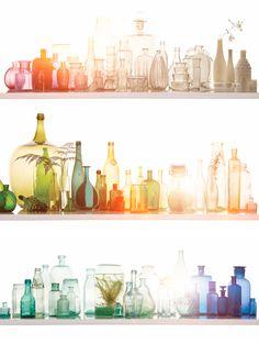 colorful glass bottles vases  rainbow light shelves plants glasses