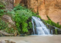 BIg Spring in the Zion Narrows