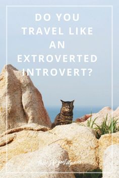 I am the textbook definition of an extroverted introvert, but it took traveling…