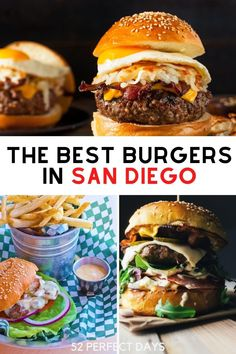 The quest for San Diego's perfect burger has begun!From the casual to the upscale experience enjoy our list of the best burgers in San Diego. San Diego Travel, San Diego Beach, Good Burger, California Travel, Foodie Travel, Travel Usa, Burgers, New Recipes, Family Travel